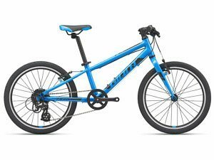 Giant ARX 20 Kids Bike - 2021 - Roe Valley Cycles