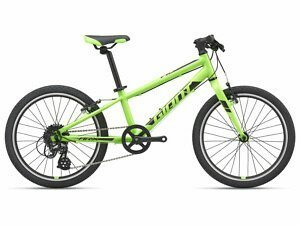 Giant ARX 20 Kids Bike - 2021
