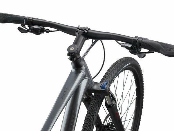 Giant Roam 2 Disc Adventure Bike - 2021